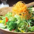 料理メニュー写真シャキシャキ ガッツリ野菜サラダ