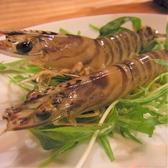 活海老バル orb 福島のおすすめ料理2