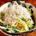 料理メニュー写真九条ねぎとジャコの明太サラダ