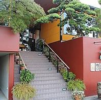 入口の「槇の木」