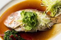 漁港より直送!!新鮮な鮮魚を侑久上海で♪