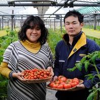 生産者さま直送の新鮮野菜