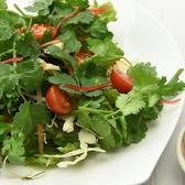 本格タイ料理バル プアン puanのおすすめ料理3