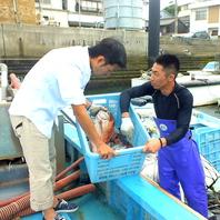 下津井漁港で店主が目利きした新鮮な魚