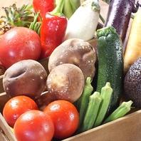 【野菜専門店♪姉妹店菜の音から仕入れた新鮮野菜】