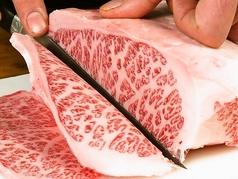 和牛 ホルモン 焼肉 こたつ 東加古川店