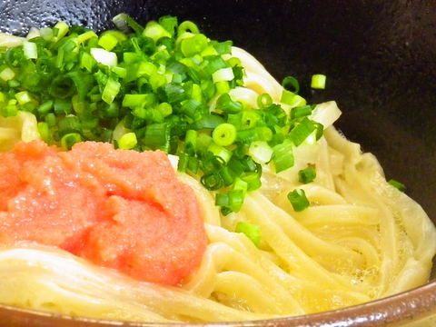 UDON 陽
