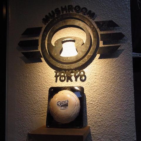テレビ番組でも数多く取り上げられている、マッシュルーム専門レストラン