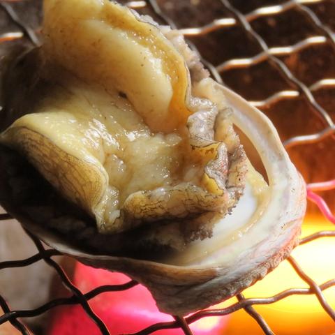 新鮮な魚介と地鶏を、七厘で豪快に焼いて楽しむ…素材の旨味を存分にお楽しみ下さい!