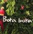 ボラボラ Borabora 大宮店のロゴ