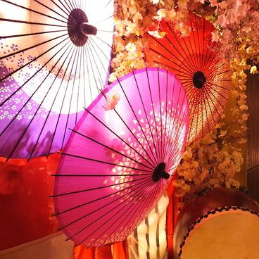 京桜 きょうざくらの雰囲気1