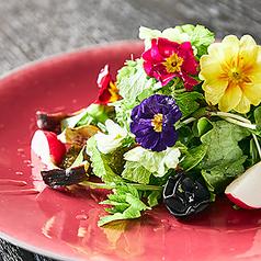 美食花!エディブルフラワーとドライフルーツのサラダ