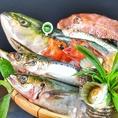 【県産鮮魚の刺身】毎日料理長が厳選した魚介や、産地直送の魚介を中心に提供します!刺身五点盛や、日替わりメニューがお得★