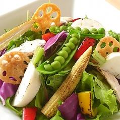 料理メニュー写真とりかくサラダ