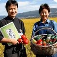 【地産地消のこだわり】山本宮子さんのトマト