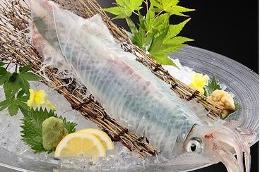 さかな市場 漁漁 多摩センター店のおすすめ料理1