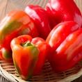 【宮崎直送のお野菜】鶏だけでなくお野菜も契約農家直送です。