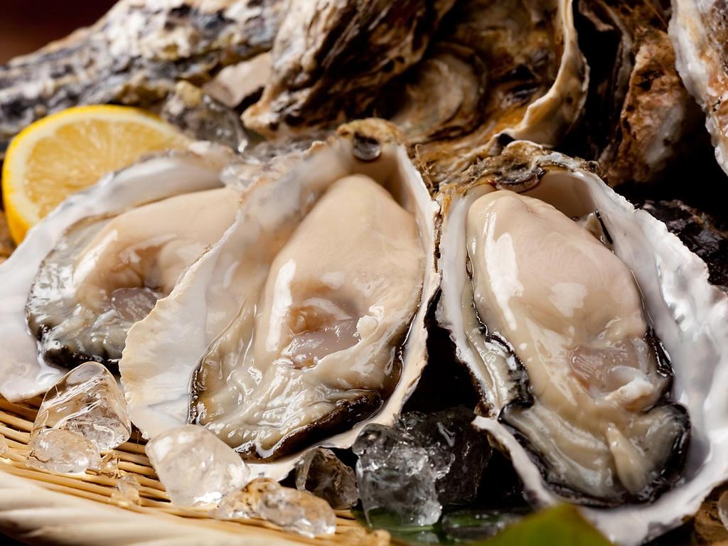 12月も旬の魚介や野菜が満載!産地直送素材を堪能できます。