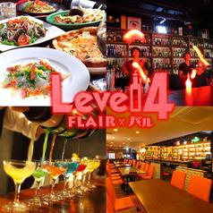 Level 4の写真