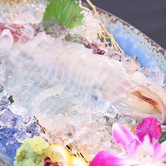 魚杳のおすすめ料理1