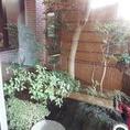 1階:玄関横の庭園風の中には、カウンター席からも見られ、季節感を感じていただけます。