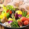 採れたて新鮮野菜が自慢です♪