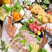 新和風九州料理 かこみ庵 かこみあん 熊本下通り店の写真