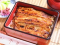料理メニュー写真静岡県産 特選うな重