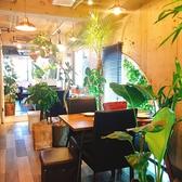 ダイニングスペース 大きな窓があるので解放感抜群!観葉植物が多く隣との席間もゆったりとした設計になっています。他のテーブルに会話の邪魔をされることもなく、安心しておくつろぎ頂けます【女子会/貸切/歓送迎会/2次会】