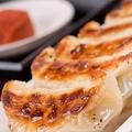 料理メニュー写真ジューシー黒豚焼き餃子