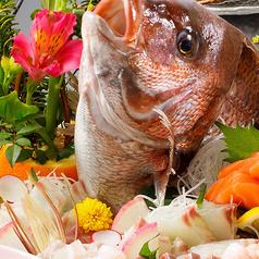 食楽市場 美膳の写真