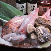 厳選した旬の魚介類