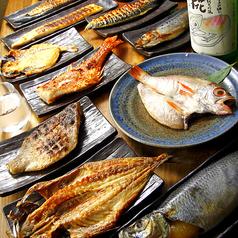 大衆魚食堂 幸村 市ヶ谷のコース写真