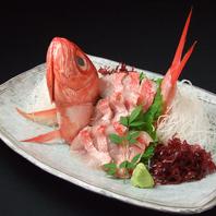 【一本売り】旬の鮮魚