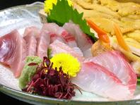 【新鮮な旬な鮮魚が食べれます】