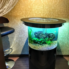 2人利用のカウンター式個室は間にテーブル水槽♪オシャレな空間と2人だけの素敵な時間をお過ごしください☆