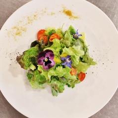 ブラーノ Burano 花と緑のレストランのおすすめ料理1