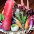 シェフが厳選した新鮮な野菜。彩り鮮やかなお料理をご堪能ください