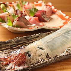 ニュー魚バカ三太郎 新宿本店の写真