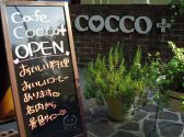 CAFE COCCO+の詳細