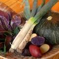 料理メニュー写真季節の新鮮野菜!!メニューもそのたびに入れ替わります