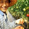 1.3haのとても広い羽田さんの畑には、およそ50種類の野菜や果物が作られています。大学時代、環境問題に取り組むうちに有機農業を目指されました。青年海外協力隊としてスリランカで農業指導もしていました!!