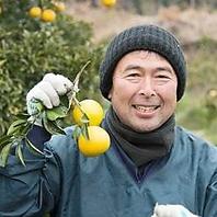全国の生産者さんから届く野菜や果実