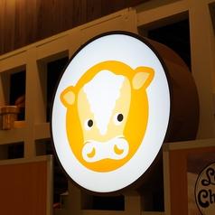 チーズ料理 Love&Cheese 名古屋ラシック店の雰囲気1