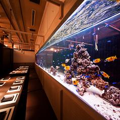 ナイトアクアリウム個室 芭蕉 水道橋店の写真