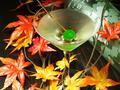 料理メニュー写真洋梨とジンのマティーニ