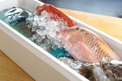 天ぷらマーケット がじまるのおすすめポイント1