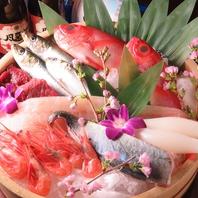 【市場直送】鮮度抜群の鮮魚