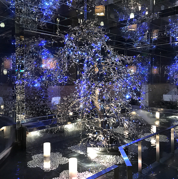 ウメ子の家 広島新天地プラザ店の雰囲気1