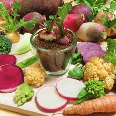 ユーズファームキッチン U's farm kitchen の写真